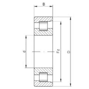 1250 mm x 1750 mm x 290 mm  ISO NF20/1250 Rolamentos cilíndricos