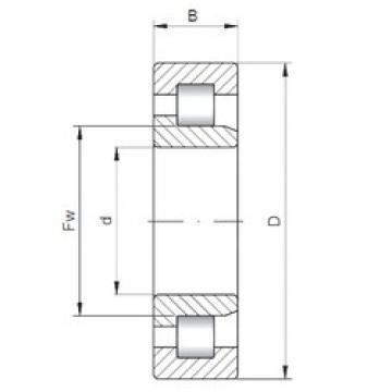 95 mm x 170 mm x 43 mm  ISO NJ2219 Rolamentos cilíndricos