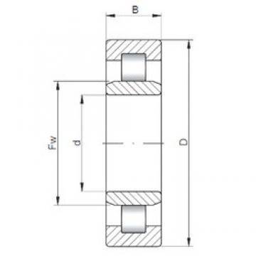 105 mm x 190 mm x 36 mm  ISO NU221 Rolamentos cilíndricos