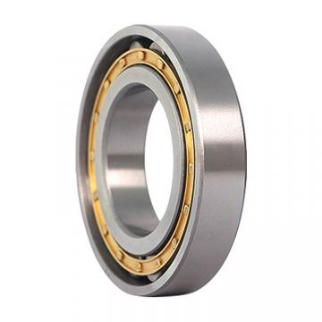 260 mm x 360 mm x 60 mm  ISO NP2952 Rolamentos cilíndricos